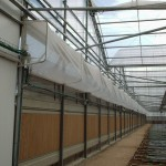 kazakhstan, hydroponic, cooling by wetwall