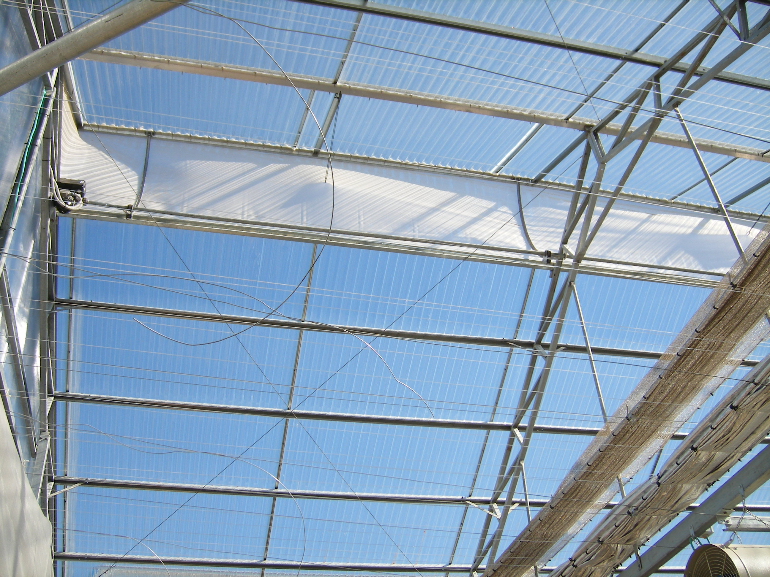 Smartfarming greenhouse with polycarbonate covering (2)