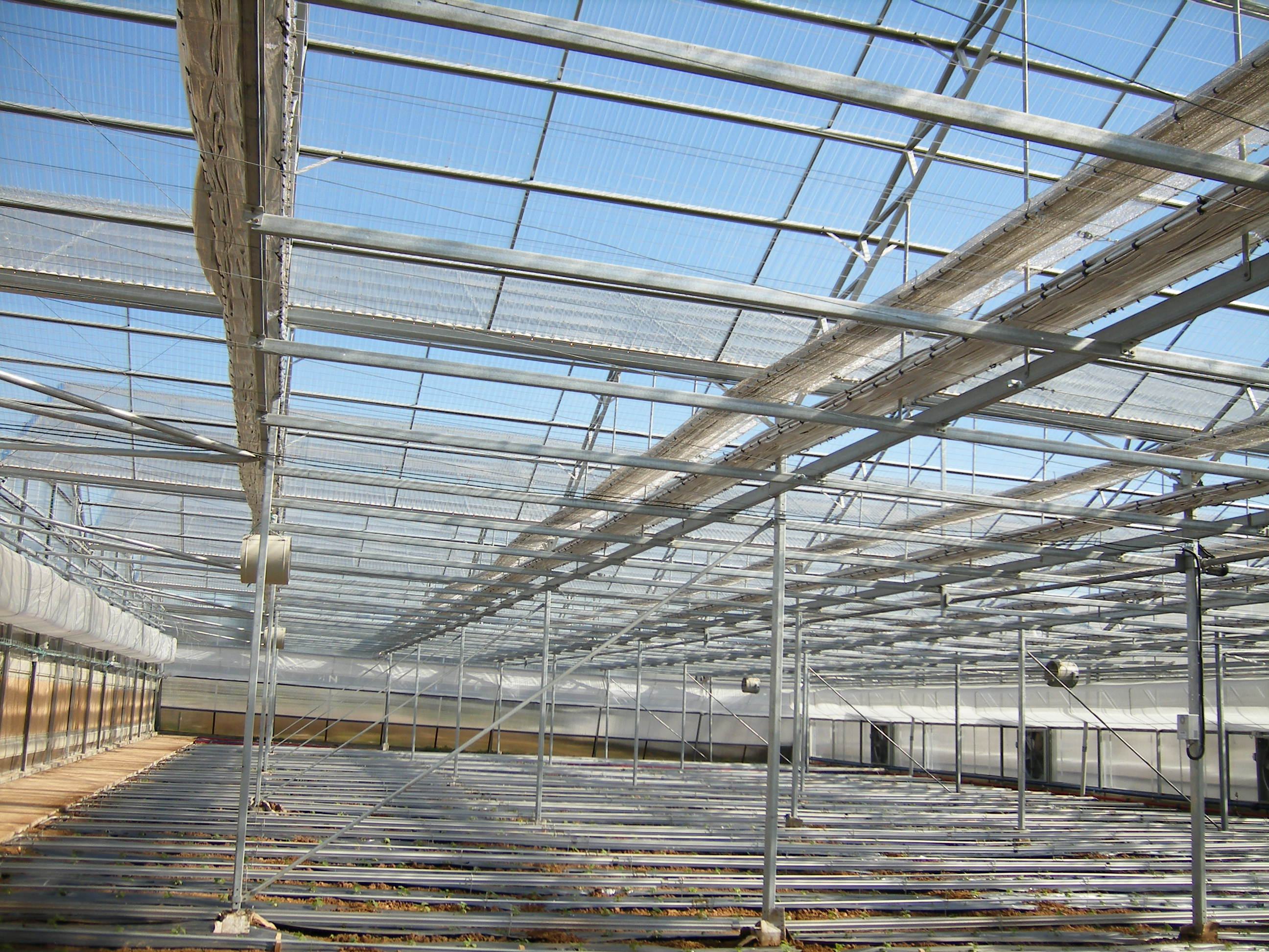 Smartfarming greenhouse with polycarbonate covering (3)