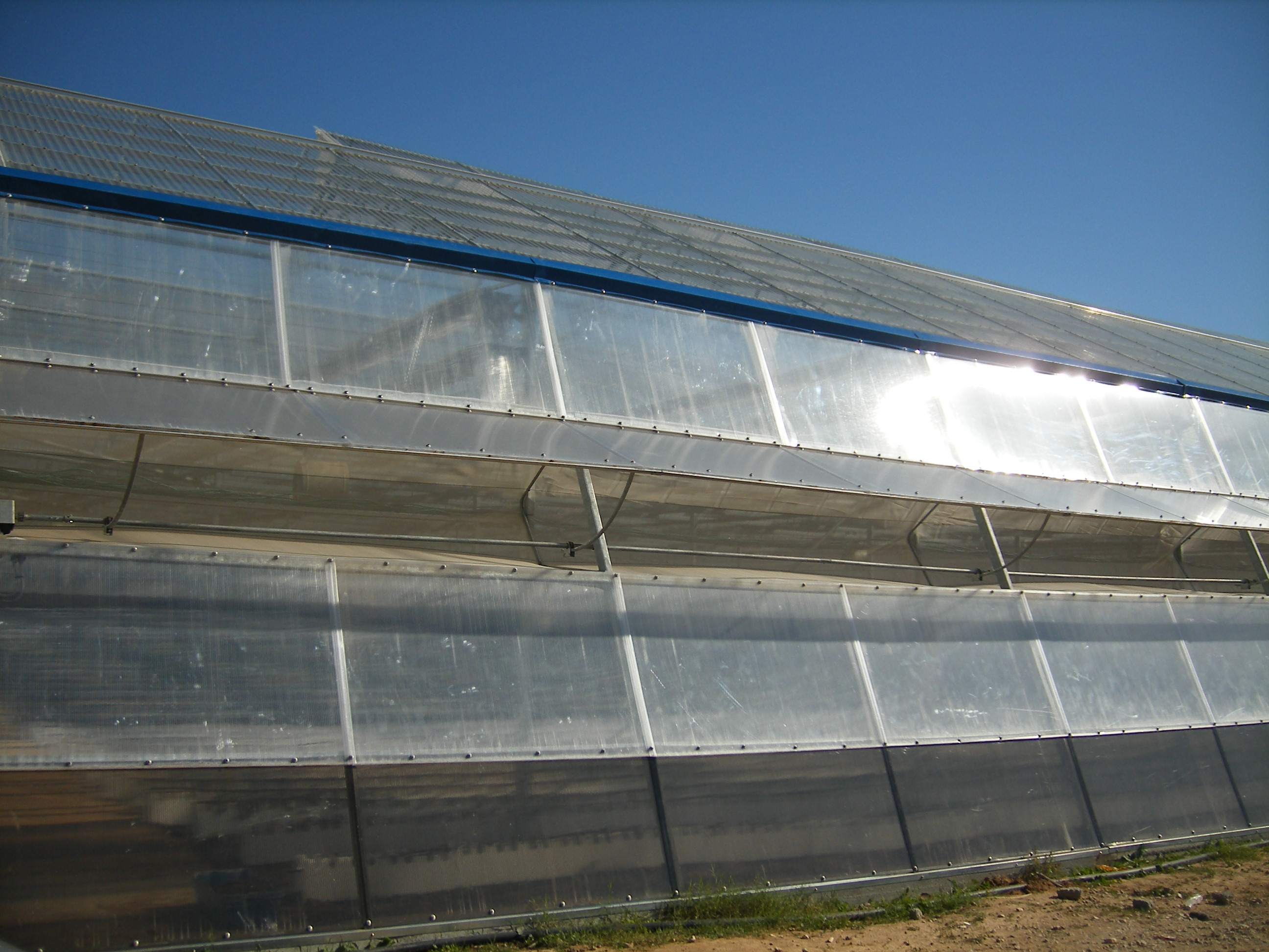 Smartfarming greenhouse with polycarbonate covering (4)
