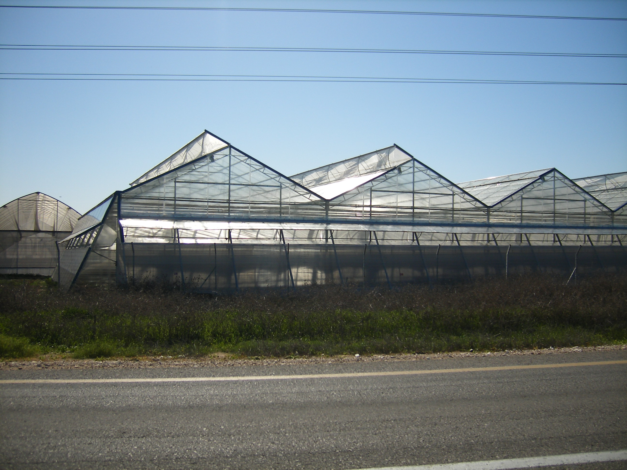 Smartfarming greenhouse with polycarbonate covering (5)